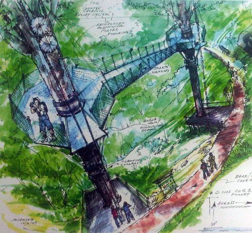 New canopy walk in Penang Hill by year-end